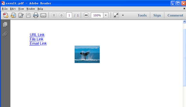 can adobe reader convert pdf to word