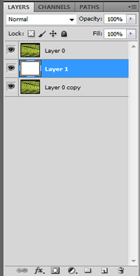 new-layer-in-layer-palette-in-photoshop-for-image-with-in-text.png