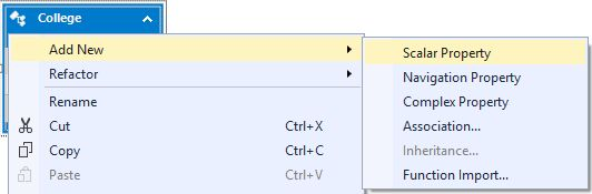 Adding Scalar Property of Entity