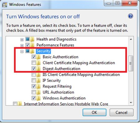 IIS Security options