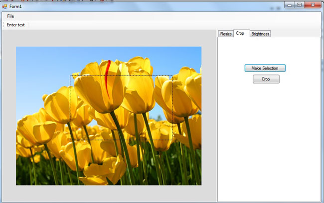 Image-Editing-tool-in-VB.Net.jpg