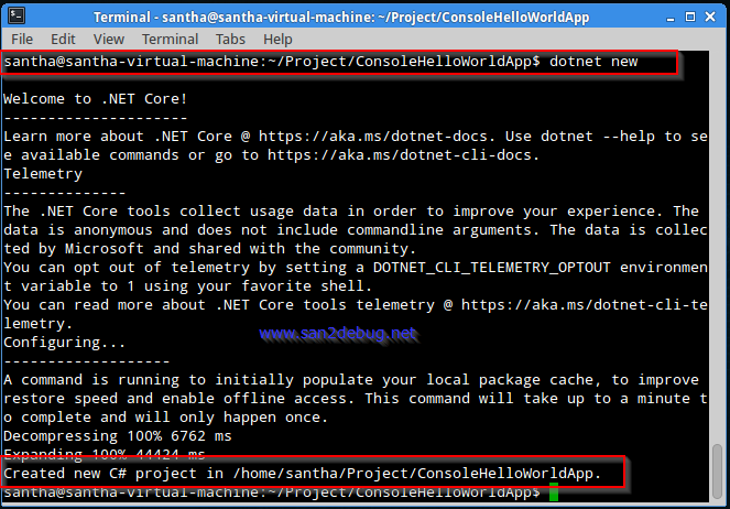 how to run a program in linux command line