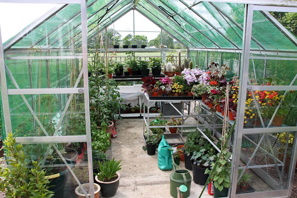Controlling greenhouse from the arduino