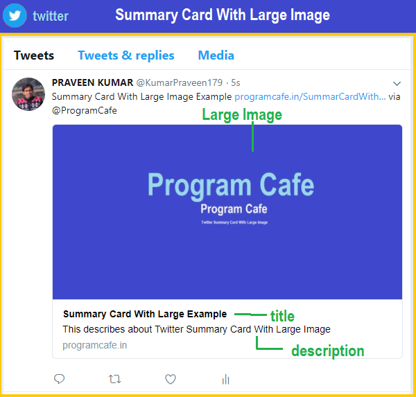 Twitter Cards Implementation With Websites